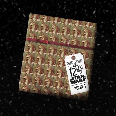 image Les 12 Jours de Star Wars - Jour 1 - La Menace Fantôme
