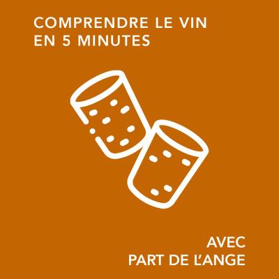 Bouchon de liège : mode ou nécessité ?/ comprendre le vin en 5 minutes cover