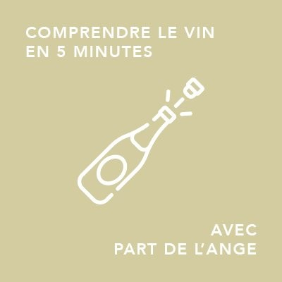 Comment fabrique-t-on le Champagne ?/ comprendre le vin en 5 minutes cover