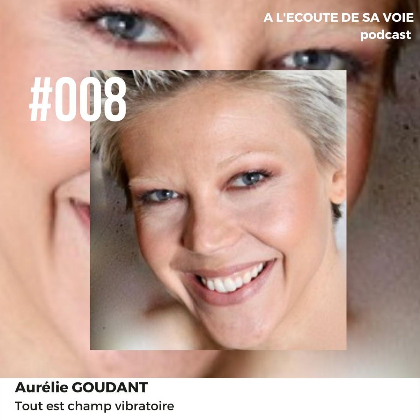 #008 Aurelie Goudant - Tout est champ vibratoire