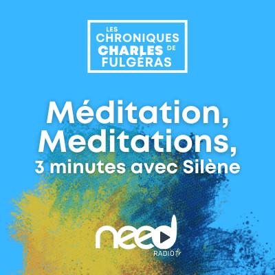 Méditation, Meditations, 3 minutes avec Silène - Sur le passage d'une sensation à l'autre cover