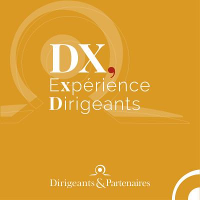 Thumbnail Image DX, Expérience Dirigeants