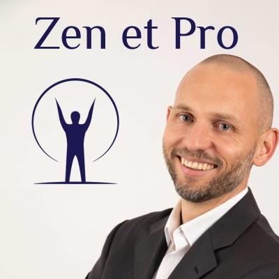0 - Zen et Pro - Vaincre le stress pour réussir cover