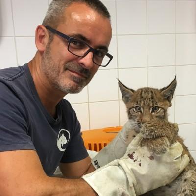 S03E21 Lynx 2/6: Une dent POUR le Lynx (Gilles Moyne, centre Athénas) cover