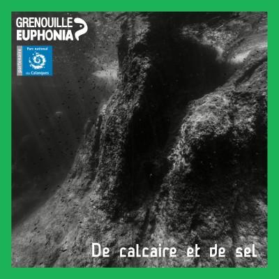 De calcaire et de sel | Biophonie sous-marine, écouter les profondeurs cover