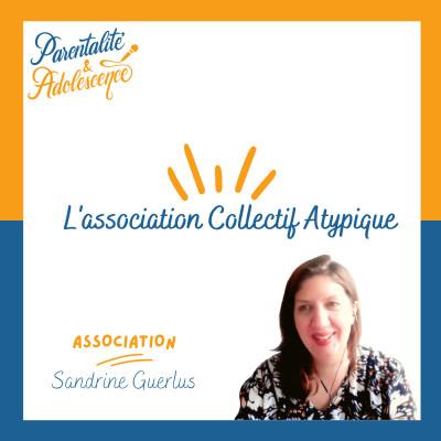 50. Collectif atypique : une association qui aide et accompagne les personnes autistes et neuroatypiques. cover
