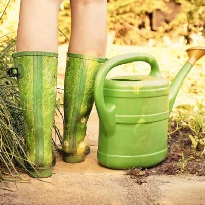 Recycler l'urine au jardin #5 décembre 2020 cover