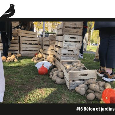 #16 Béton et jardins cover