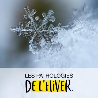 Les pathologies de l'Hiver cover