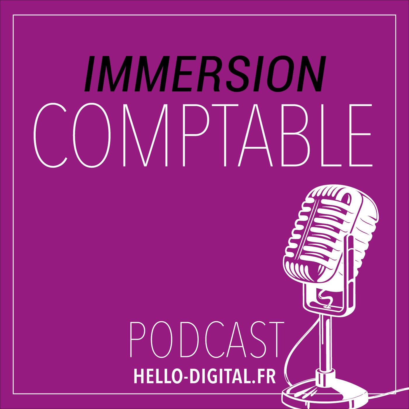 IMMERSION COMPTABLE S02E01 - BENOIT BOBIS 1/2 «Nous sommes des linguistes de la langue comptable»
