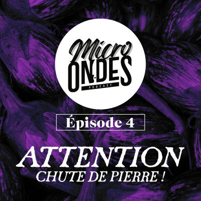 Micro Ondes  - Attention chute de Pierre ! cover