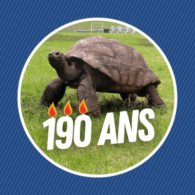 Jonathan, le plus vieil animal terrestre connu cover