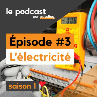 L'Électricité -  Les Diagnostics Immobiliers #3 cover