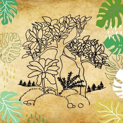 Les forêts, préserver ou replanter ? cover