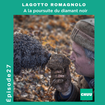 # 27 - LAGOTTO ROMAGNOLO - A la poursuite du diamant noir cover