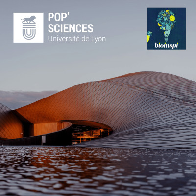 Architecture biomimétique : le nouveau souffle du bâtiment cover