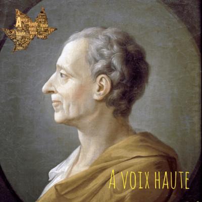 image Montesquieu - Lettres Persanes -11 - Yannick Debain