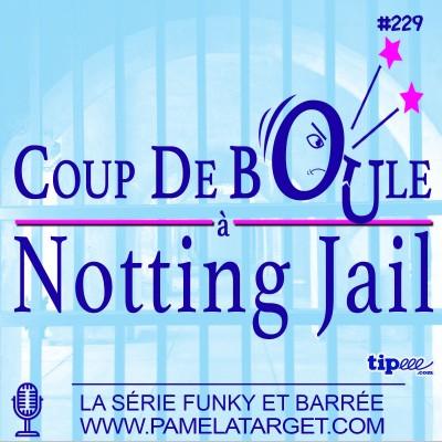 PTS02E29 Coup de boule a Notting Jail cover