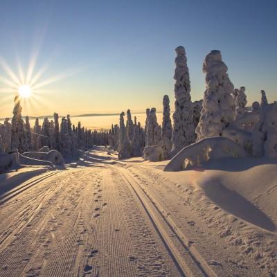 Direction la Laponie... en restant chez vous ! cover