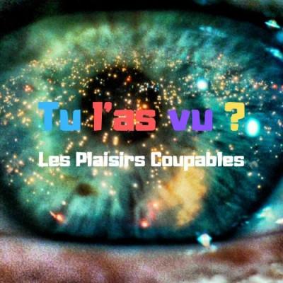 04 - Les Plaisirs Coupables cover