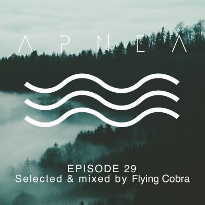 image Episode 29 - Selected & mixed by Flying Cobra