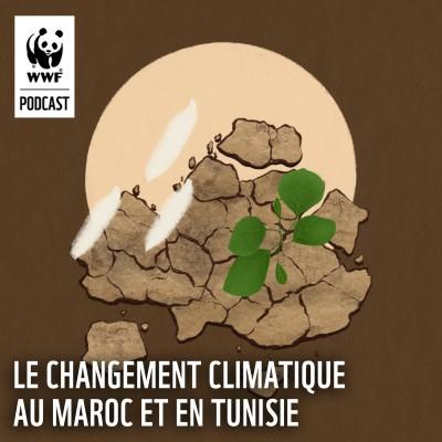 Le changement climatique au Maroc et en Tunisie cover