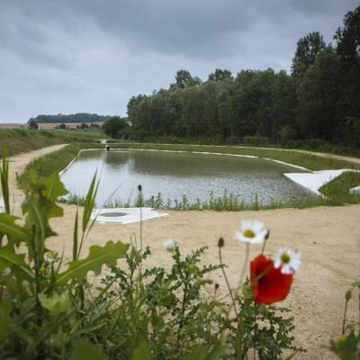 À quoi servent les bassins d'eau le long de l'autoroute ? cover