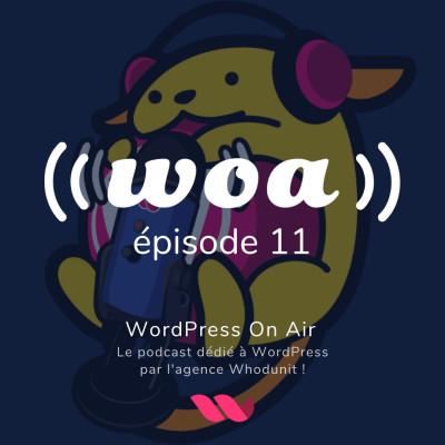 WOA! (WordPress On Air) #11 - Alexandre Derocq - Parlons newsletter avec Acymailing cover