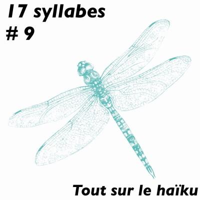 """17 S#9 Souvenirs : les haïkus comme""""alliés de mémoire"""" de Philippe Macé cover"""