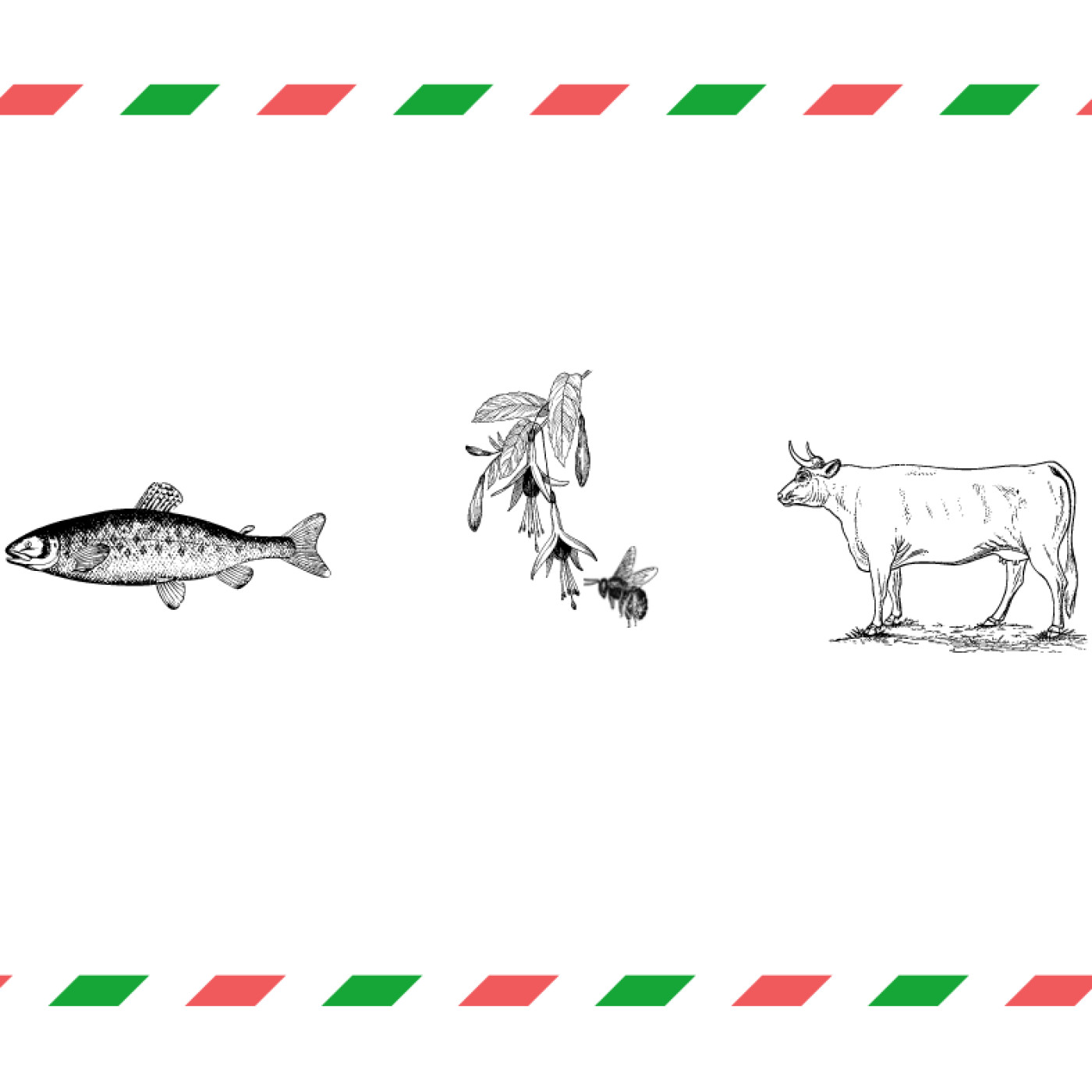 "Bernard Kloareg - ""Les Agriculturels"""