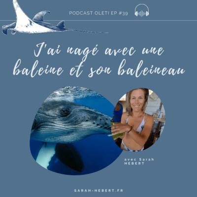 EP 39 - J'ai nagé avec une baleine et son baleineau ! cover