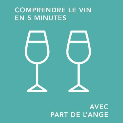 Le verre à vin, réel intérêt ou prise de tête superflue ?/ comprendre le vin en 5 minutes cover