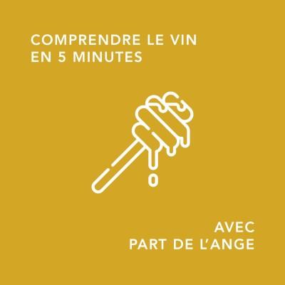 qu'est ce qu'un vin liquoreux ? / 5 minutes pour comprendre le vin cover
