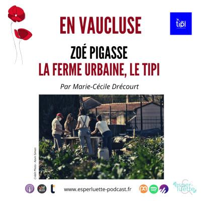 La ferme urbaine Le Tipi - En Vaucluse cover