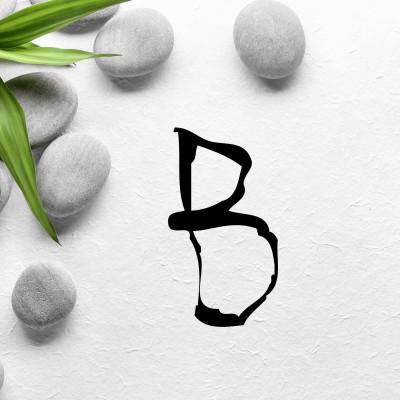 La lettre B cover