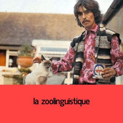 la zoolinguistique (Catherine Kerbrat-Orecchioni) cover