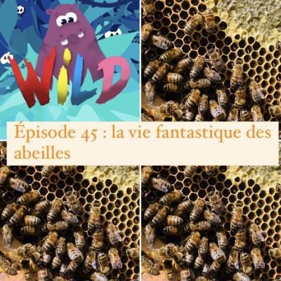 WILD #46 : La vie secrète des abeilles cover