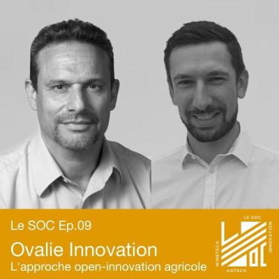 #09 -Ovalie Innovation- Quelle place pour l'innovation dans la coopération agricole? cover