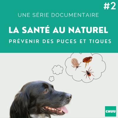 # 38 - LA SANTE AU NATUREL - Prévenir des puces et tiques ? cover