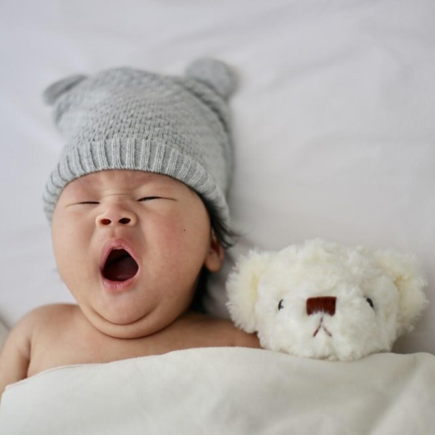 S02E120 Les animaux parlent 8/8: préjugés sur les sons de bébé, Nicolas Mathevon (bioacousticien)