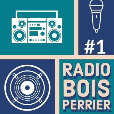 Radio Bois Perrier #1 cover