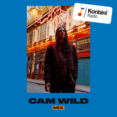 'Soulful Classics' Mix - Cam Wild cover