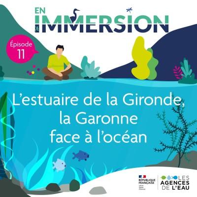 L'estuaire de la Gironde, la Garonne face à l'océan cover