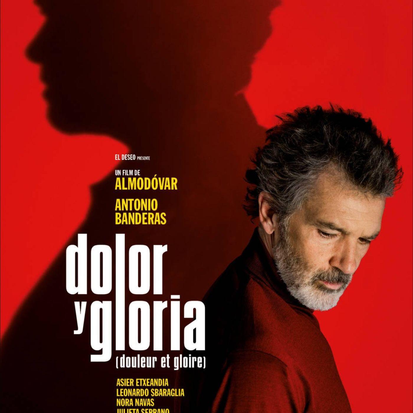 Critique du film Douleur et Gloire   Cinémaradio