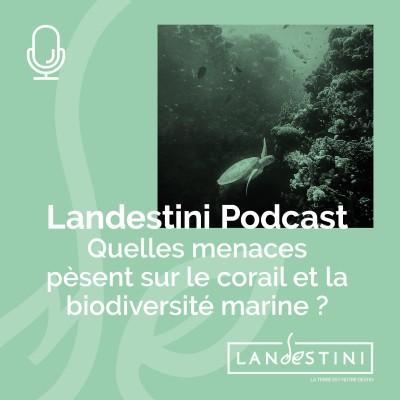 image Le Podcast : Quelles menaces pèsent sur le corail et la biodiversité marine ?