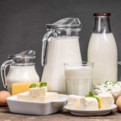Produits laitiers : nos amis pour la vie ? cover