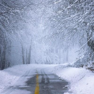 «Il neigera toute la journée dans l'Est» confirme Météo France cover