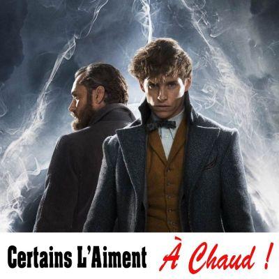 image CLAAC 13 Les Animaux fantastiques - Les Crimes de Grindelwald (une bande annonce de 2h14)