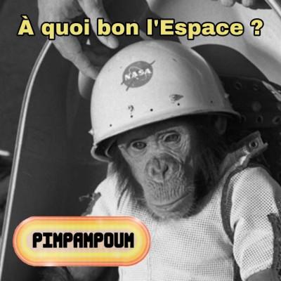 #29.4 - À quoi bon l'Espace ? - SOS à l'ISS cover