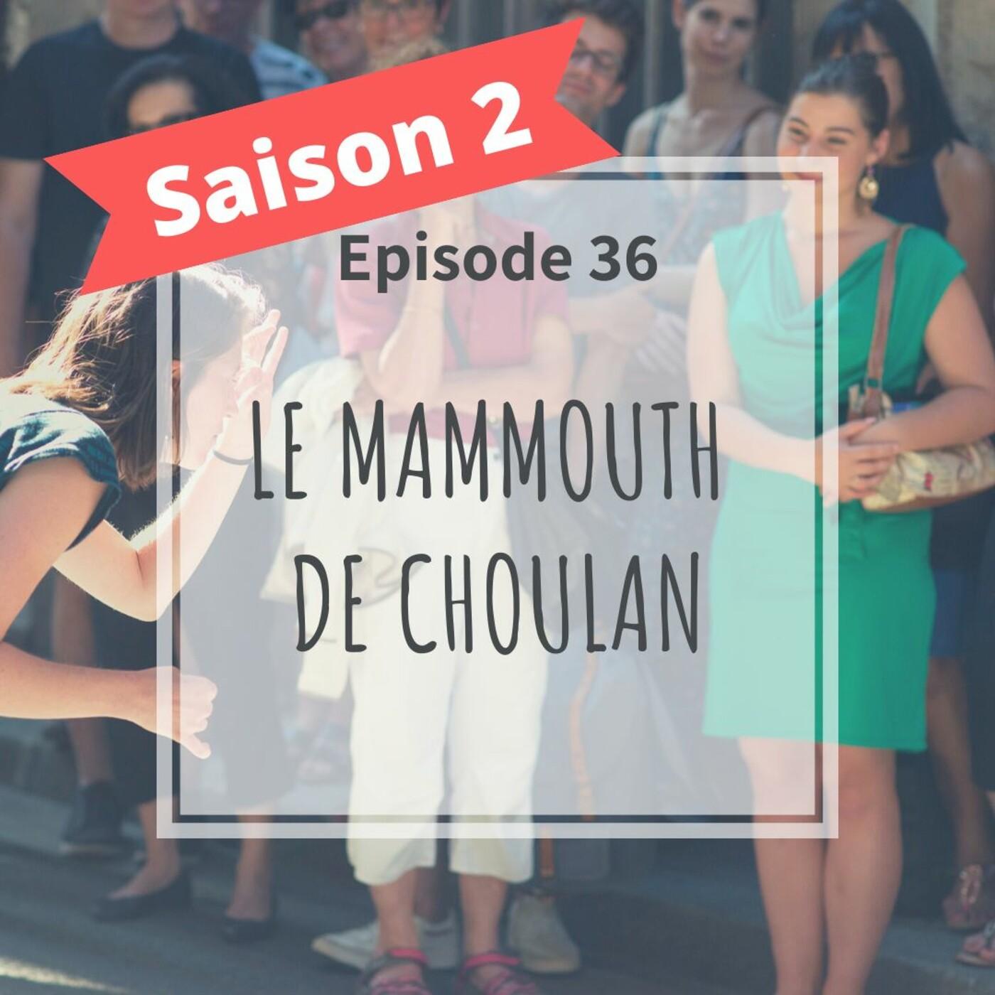 2-36 - Le Mammouth De Choulans